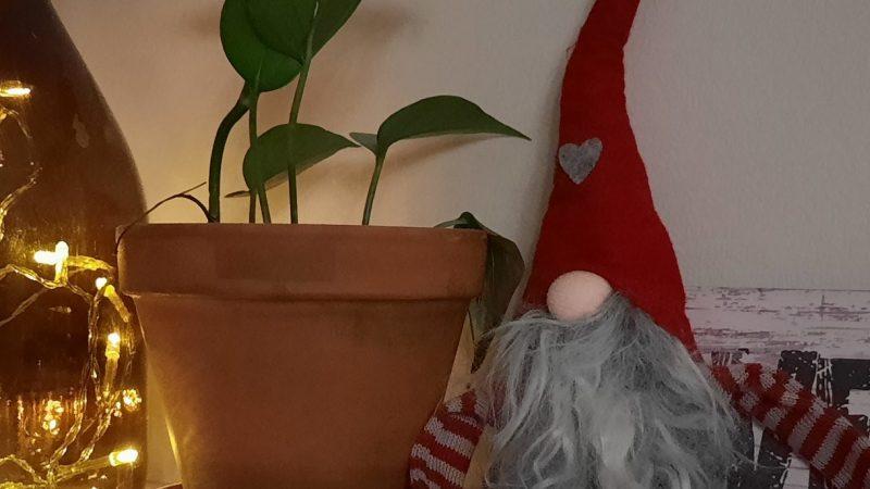 Tontun lapikkaita ja pipareiden muruja – sananen joulun alla ilmestyvästä hiippailijasta
