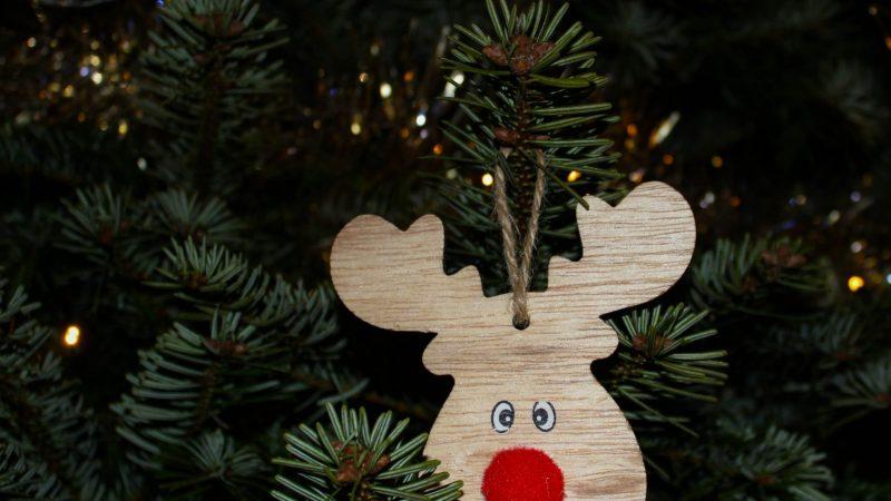 Mikä olisikaan sen parempi tapa saada verenpaine nousemaan kuin joulu ja pakkoperinteet
