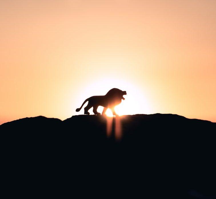 Aikamatkalla lapsuuteen – 3D kosminen leijonankesyttäjä