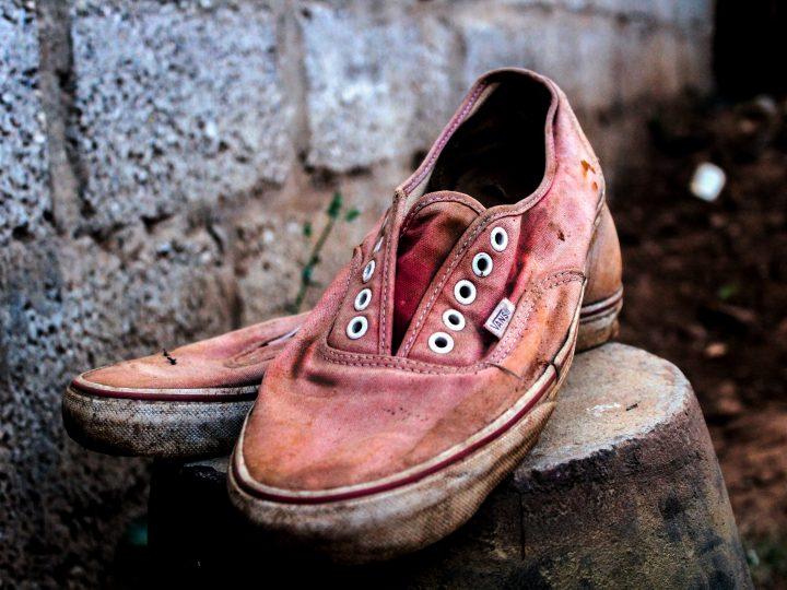 selective focus photo of pair of pink Vans low-top sneakers on top of gray concrete block
