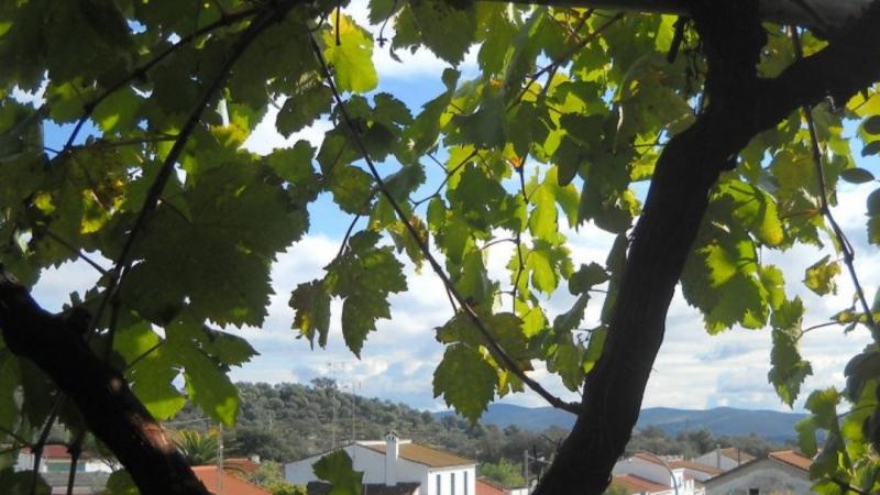 Minun Espanjani: Hidasta elämää pienessä vuoristokylässä