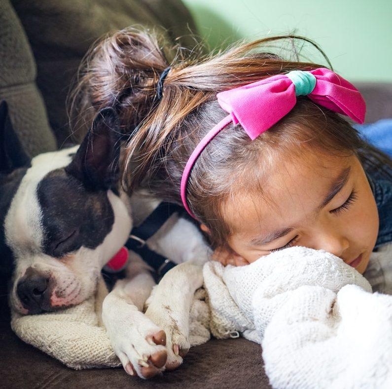 Lemmikki lapsiperheessä: onko lemmikeistä lapsille hyötyä?